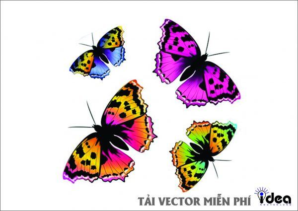 con bướm vector