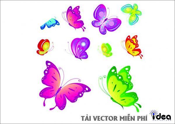 con bướm vector t